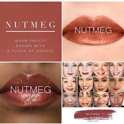 Gorgeous Copper Lip Look